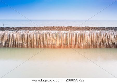 Bamboo seacoast wall barrier natural seacost skyline landscape