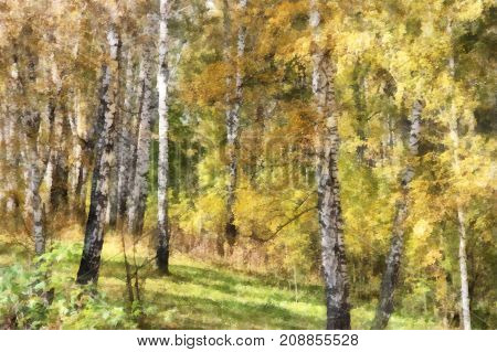 Tall Slender White Birch Trunks In A Golden Dress. Originally Russian Autumn Landscape Watercolor Il
