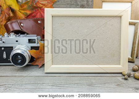Empty Frames, Classic Camera, Yellow Dry Leaves