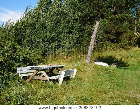 Table made of wood in the middle of nature for great outdoors relaxation