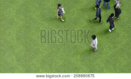 man and women people walk on across grass greenfield landscape background in the garden park (Aerial top view)