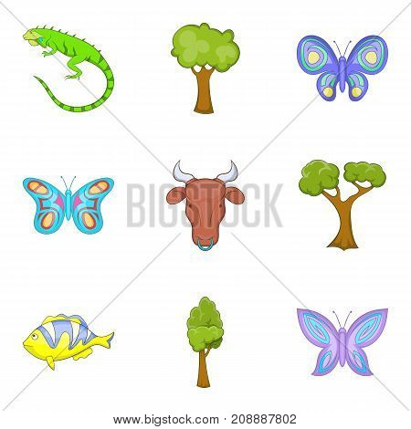 Moth icons set. Cartoon set of 9 moth vector icons for web isolated on white background