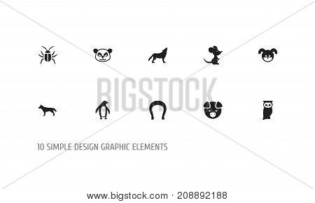 Set Of 10 Editable Zoo Icons. Includes Symbols Such As Hog, Dog, Diver And More