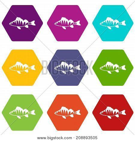 European perch, Perca fluviatilis icon set many color hexahedron isolated on white vector illustration