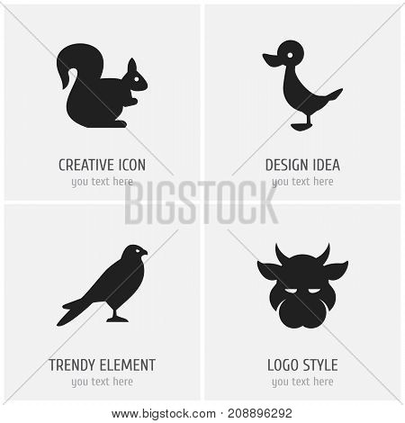 Set Of 4 Editable Zoology Icons. Includes Symbols Such As Eagle, Kine, Quack And More