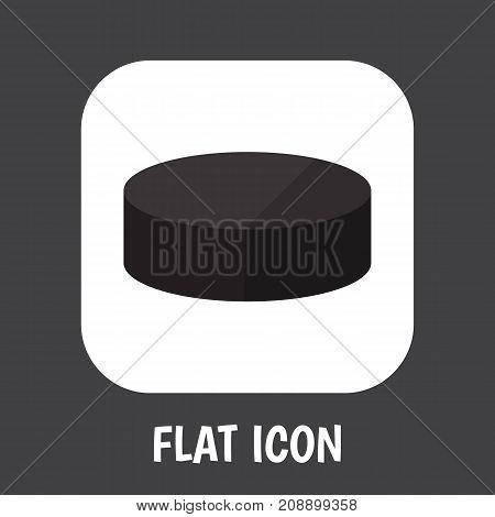Vector Illustration Of Sport Symbol On Puck Flat Icon