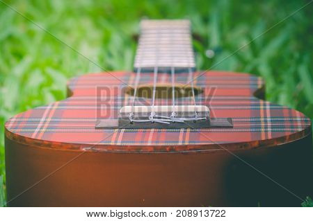 Abstract image close up of musical instrument ukulele guitar on green grass in vintage style. (Selective focus)