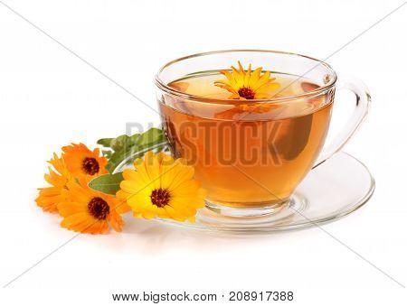 Calendula tea with fresh flowers isolated on white background.