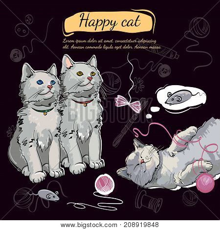 Beautiful and funny kittens. Template for cat food veterinary clinic. Cheerful kittens happy cat dreams of a mouse