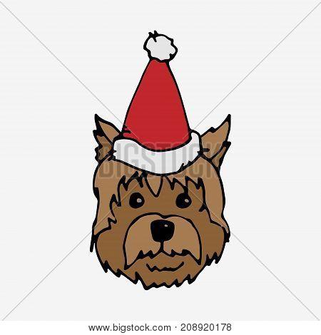 Dog In Red Cap
