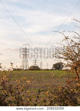 Electricity Pylons Row Of Far Distance Field Farm Agriculture