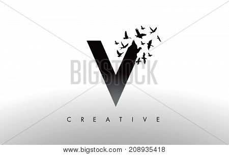 V Logo Letter With Flock Of Birds Flying And Disintegrating From The Letter.