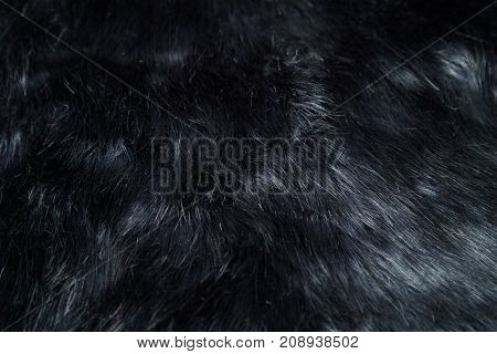 black artificial fur with a long pile, like a background or a test