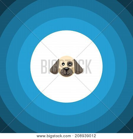 Puppy Vector Element Can Be Used For Dog, Puppy, Hound Design Concept.  Isolated Dog Flat Icon.