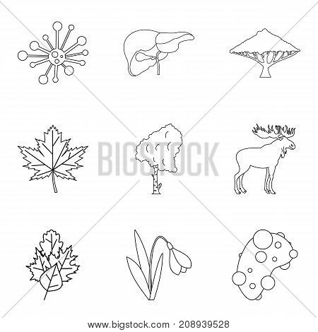 Fertilizer icons set. Outline set of 9 fertilizer vector icons for web isolated on white background