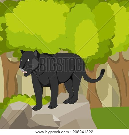 Panther on a stone against a forest, a predator.Flat design, vector illustration, vector.