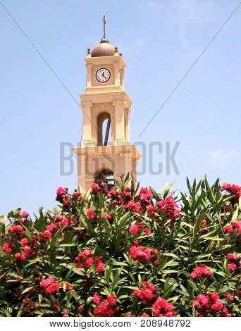 Flowers and Bell Tower of St. Peter's Church in old city Jaffa Israel