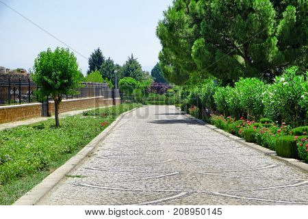 Beautiful view of pathway in park on sunny day