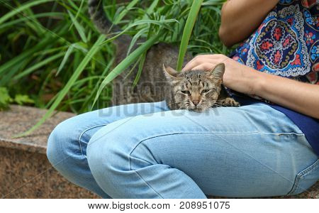 Young woman stroking cute cat outdoors