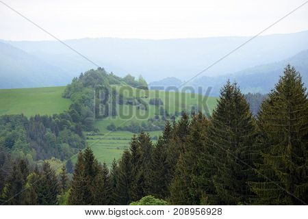 Beautiful gorge among the mountains covered with green vegetation and trees in the spring.