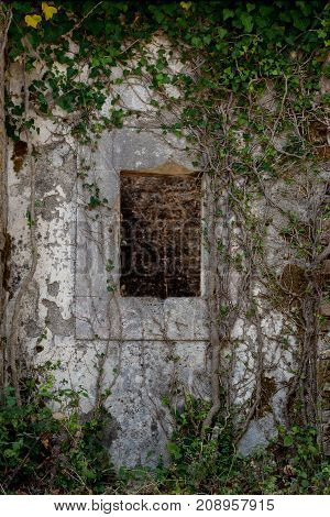 Ancient Stone Wall With Window And Old Ivy Climbing On It. Abandoned Mysterious Place. The Picture W