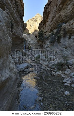 Deep gorge waterfall in Ein Gedi National park Israel