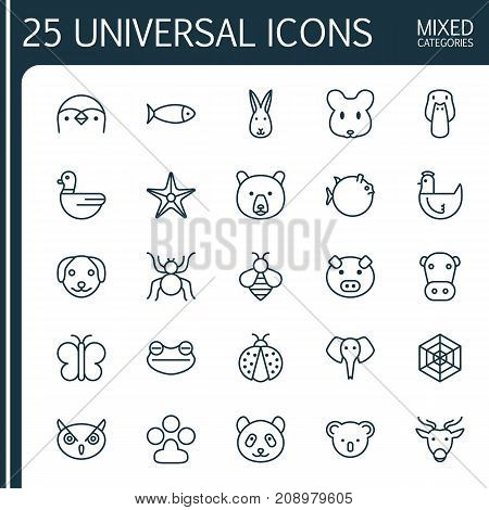 Nature Icons Set. Collection Of Bunny, Ladybird, Rat And Other Elements