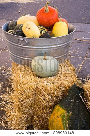 Pumpkins gourds and winter squash in a galvanized metal container with handles photographed from the front. Loose straw is visible on the pavement and a huge gourd is leaning against the hay bale.