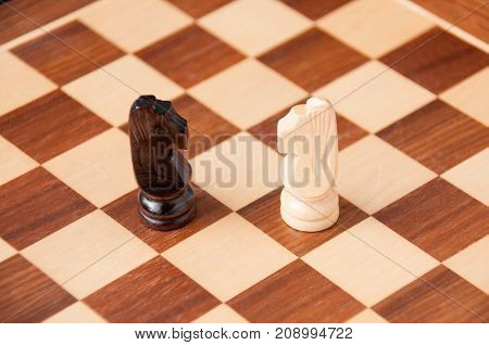 Confrontation On The Chessboard: White And Black Horse