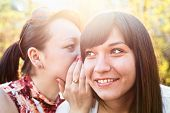 Young beautiful woman whispers something to girlfriend in her ear poster