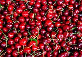 many fresh red sweet cherry on street market poster
