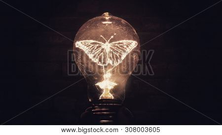 Butterfly Illuminated Inside Filament Light Bulb Conceptual Photo Art Of New Ideas Transformation In