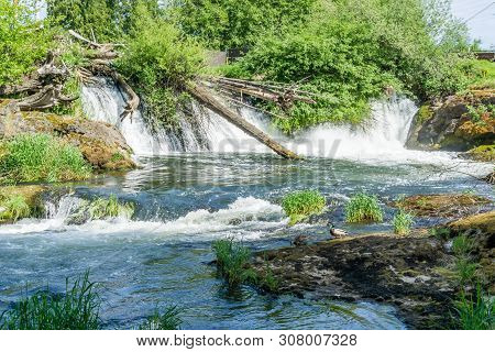A View From Downstream  At Tumwater Falls In Tumwater, Washington.