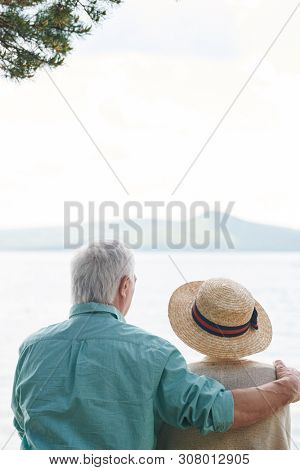 Rear view of affectionate senior spouses sitting in front of lake poster