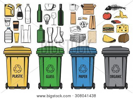 Waste Sorting For Recycling Vector Design. Sorted Recycle Bins With Organic Garbage, Plastic, Paper