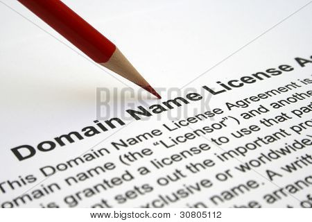 Domain Name License Agreement