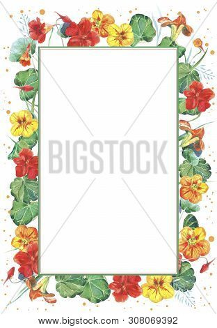 Watercolor Frame Template With Nasturtium Flowers. Hand Drawn Watercolor Illustration.
