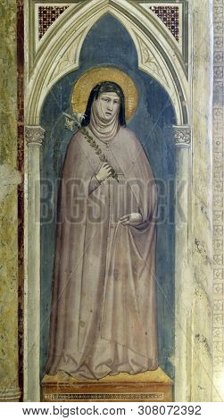 FLORENCE, ITALY - JANUARY 10, 2019: Saint Clare of Assisi holding a lily, fresco by Giotto di Bondone in Basilica di Santa Croce (Basilica of the Holy Cross) - famous Franciscan church in Florence