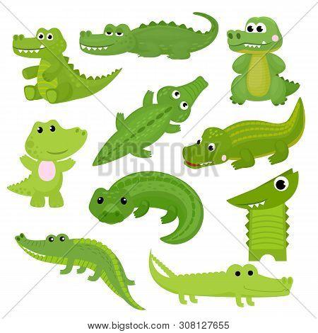Crocodile Vector Cartoon Crocodilian Character Of Green Alligator Playing In Kids Playroom Illustrat