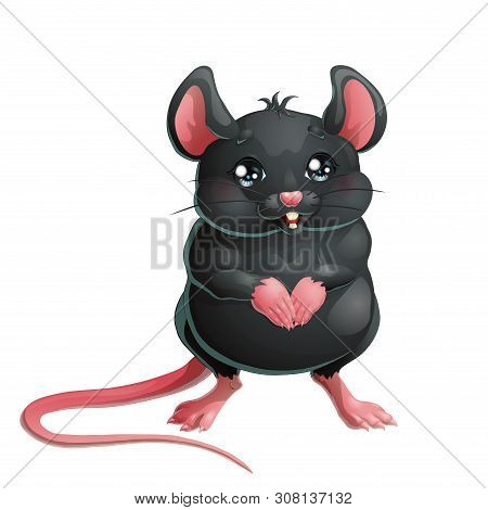 The Cute Black Mouse On White Background