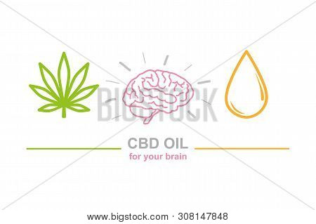 Cbd Oil For Brain Concept With Cannabis Leaf Brain And Oil Drop Vector Illustration Eps10