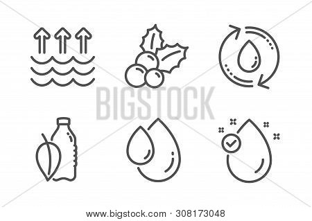 Refill Water, Christmas Holly And Oil Drop Icons Simple Set. Water Bottle, Evaporation And Vitamin E