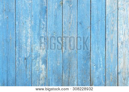 Texture Wall Wooden Blue Background. Background Of The Tree, Planks Blue Color, Free Without Objects