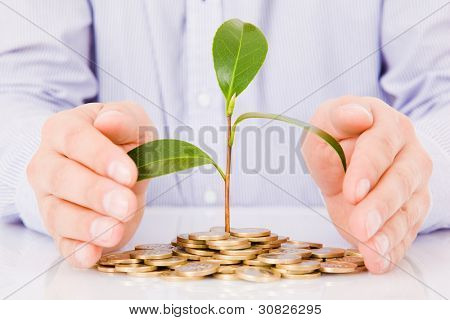 Business man hands with a tree growing from pile of coins
