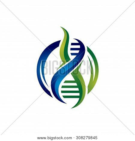Unique 3d Design Medical Dna Helix Logo Template