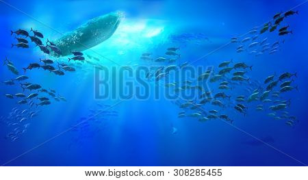 Small fishing boat in the ocean. Shoal of fish. Underwater view.