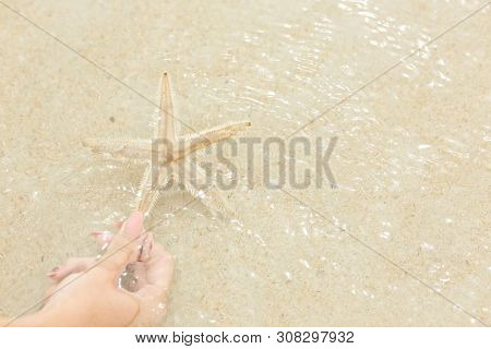 Girl Holding The Starfish On The, Beautiful Starfish In Crystal Clear Sea, Travel Concept On Tropica