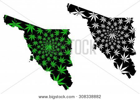 Sonora (united Mexican States, Mexico, Federal Republic) Map Is Designed Cannabis Leaf Green And Bla