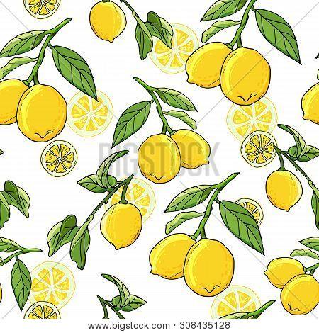 Fresh Lemons Hand Drawn Background. Doodle Wallpaper Idea.