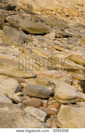 Rocks With Embeded Fossils In Whitby
